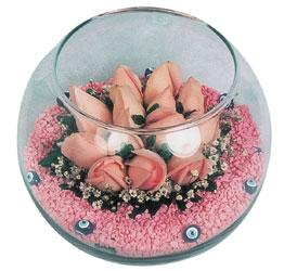 Ankara internetten çiçek satışı  cam fanus içerisinde 10 adet gül
