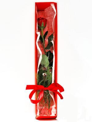 Ankara yurtiçi ve yurtdışı çiçek siparişi  1 adet kutuda gül