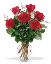 Ankara çiçek gönderme sitemiz güvenlidir  7 adet kirmizi gül cam yada mika vazoda sevenlere