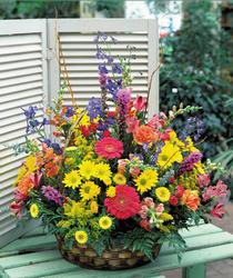 Ankara hediye sevgilime hediye çiçek  karisik mevsim sepet çiçegi