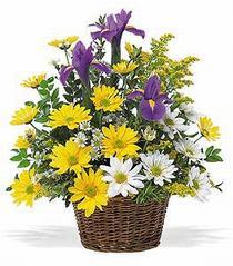 Ankara çiçek online çiçek siparişi  çiçek klasik kir sepeti sevenlere