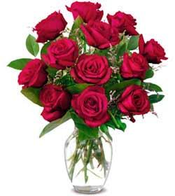 Ankara online çiçek gönderme sipariş  1 düzine kirmizi gül sevenlere özel vazo gülleri