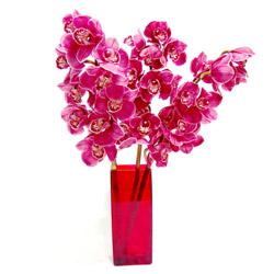Ankara ucuz çiçek gönder  Cam yada mika vazo içerisinde 3 adet dal orkide