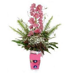Ankara İnternetten çiçek siparişi  cam yada mika vazo içerisinde tek dal orkide çiçegi