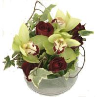 Ankara kaliteli taze ve ucuz çiçekler  1 kandil orkide ve 5 adet kirmizi gül
