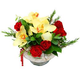 Ankara çiçek gönderme  1 adet orkide 5 adet gül cam yada mikada