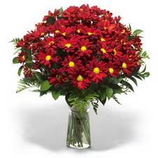 Ankara çiçek yolla  Kir çiçekleri cam yada mika vazo içinde