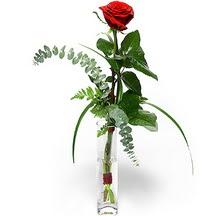 Ankara 14 şubat sevgililer günü çiçek  Sana deger veriyorum bir adet gül cam yada mika vazoda