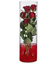 cam içerisinde 7 adet kirmizi gül  Ankara çiçekçiler
