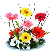 Ankara İnternetten çiçek siparişi  camda gerbera ve mis kokulu kir çiçekleri