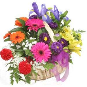 Karisik mevsim çiçekleri sepeti  Ankara internetten çiçek siparişi