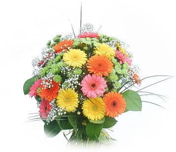 13 adet gerbera çiçegi buketi  Ankara online çiçek gönderme sipariş