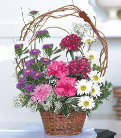 Görsel kir çiçegi sepeti mis kokulu  Ankara çiçek siparişi sitesi