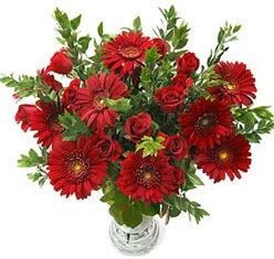 5 adet kirmizi gül 5 adet gerbera aranjmani  Ankara İnternetten çiçek siparişi