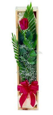 1 adet kutuda kirmizi gül  Ankara çiçek gönderme sitemiz güvenlidir