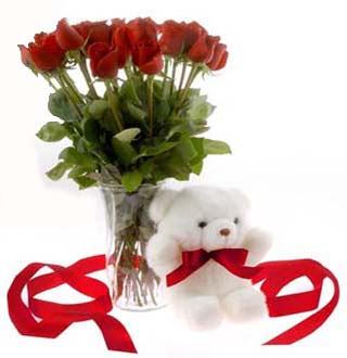 Ankara online çiçek gönderme sipariş  12 adet kirmizi gül ve pelus ayicik