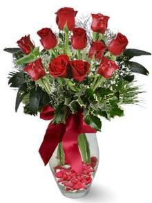 9 adet gül  Ankara internetten çiçek satışı  kirmizi gül