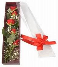 kutu içinde 5 adet kirmizi gül  Ankara internetten çiçek siparişi