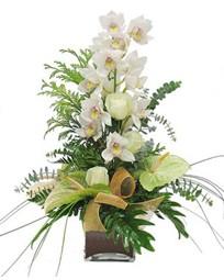 Ankara çiçek mağazası , çiçekçi adresleri  cam vazo içerisinde 1 dal orkide çiçegi