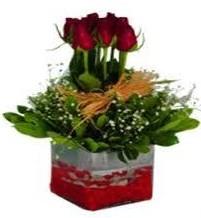 Ankara çiçek gönderme  7 adet mika yada cam vazoda gül tanzimi
