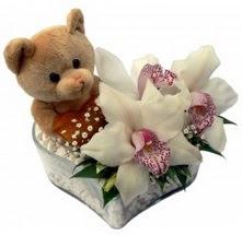 Ankara çiçek yolla  15 cm boyutlarinda ayicik ve 1 kandil orkide