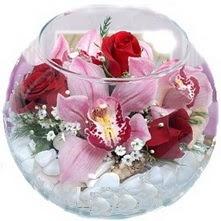 Ankara çiçekçi telefonları  fanus içinde 1 kandil orkide 3 gül aranjmani