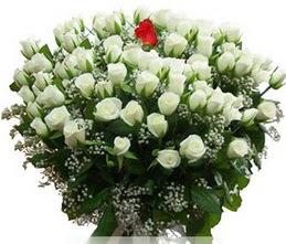 Ankara internetten çiçek satışı  100 adet beyaz 1 adet kirmizi gül buketi