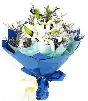 Ankara anneler günü çiçek yolla  4 adet dal kazablankadan görsel buket