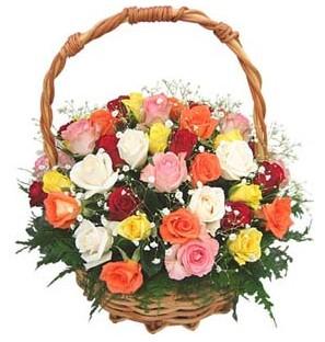 Ankara internetten çiçek siparişi  29 adet rengarenk gül sepeti tanzimi