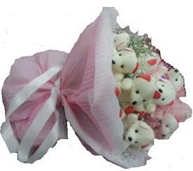Ankara çiçek siparişi vermek  12 adet ayıcıktan ayı buketi