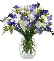 Ankara yurtiçi ve yurtdışı çiçek siparişi  Vazoda karisik özel frezyalar