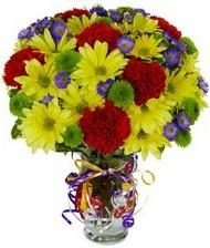 En güzel hediye karışık mevsim çiçeği  Ankara İnternetten çiçek siparişi