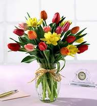 Ankara çiçekçiler  Karisik kaliteli lale demeti