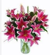 5 Adet dal kazablanka vazo tanzim çiçeği