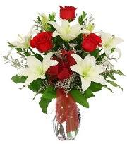 5 adet kırmızı gül ve 1 dal kazablanka  Ankara çiçek siparişi sitesi
