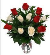 Vazo içerisinde 6 kırmızı 6 beyaz gül  Ankara İnternetten çiçek siparişi