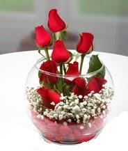 Cam fanus içerisinde 9 adet kırmızı gül  Ankara çiçek siparişi vermek