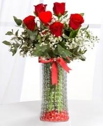 Cam vazoda 5 adet kırmızı gül kalp çubuk  Ankara ucuz çiçek gönder