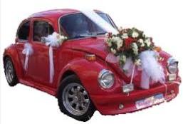 Sade gelin arabası süslemesi  Ankara çiçek mağazası , çiçekçi adresleri