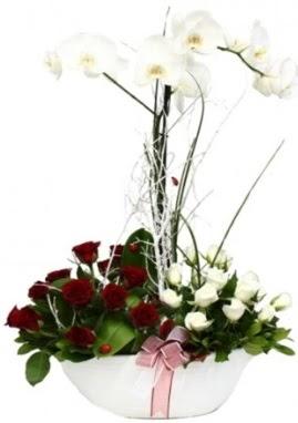 Tek dal beyaz orkide 8 beyaz 8 kırmızı gül  Ankara çiçek satışı