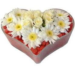 Kalp içerisinde 7 beyaz gül ve papatyalar  Ankara internetten çiçek satışı