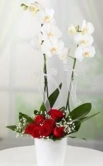 2 dallı beyaz orkide 7 adet kırmızı gül  Ankara 14 şubat sevgililer günü çiçek
