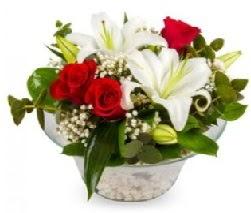 Cam içerisinde 2 kandil kazablanka 5 gül  Ankara internetten çiçek siparişi