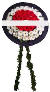 mozele çiçeği  Ankara hediye sevgilime hediye çiçek