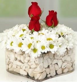 Mika kalpte papatyalar ve 3 gül  Ankara çiçekçi telefonları