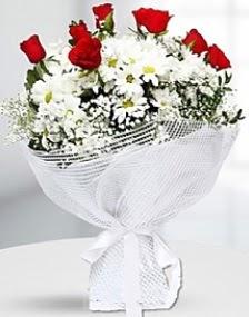 7 kırmızı gül ve papatyalar buketi  Ankara internetten çiçek satışı