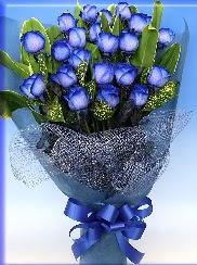 19 adet eşsiz mavi gül buketi  Ankara uluslararası çiçek gönderme