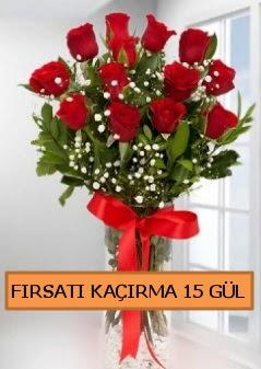 15 İthal kırmızı gül büyük başlı orjinal  Ankara çiçek siparişi sitesi