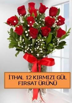 İthal kırmızı 12 adet kaliteli gül  Ankara ucuz çiçek gönder