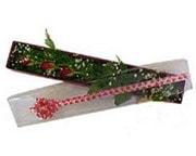 Ankara İnternetten çiçek siparişi  3 adet gül.kutu yaldizlidir.